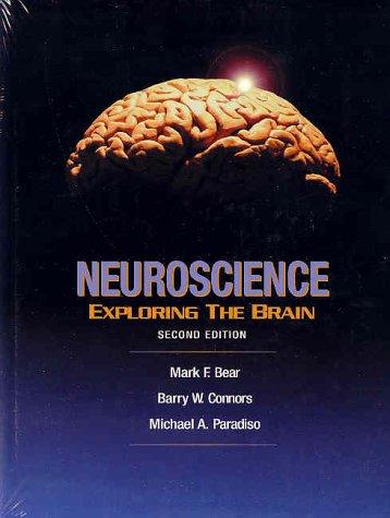 Bear-Neuroscience2.jpg